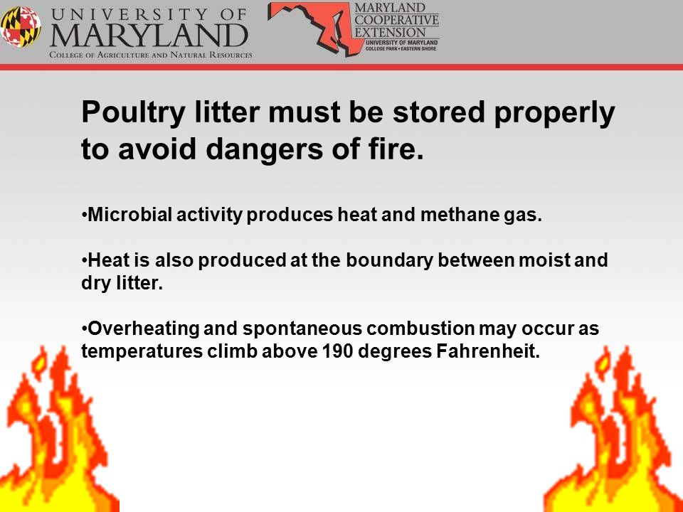 Poultry litter must be stored properly to avoid dangers of fire.