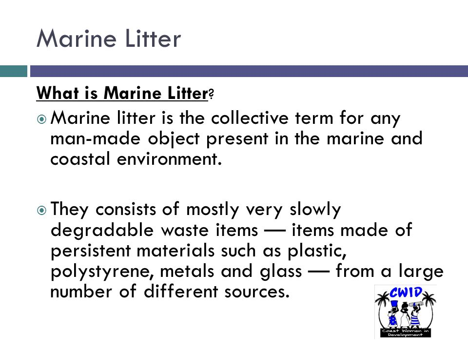 Marine Litter What is Marine Litter ?  Marine litter is the collective term for any man-made object present in the marine and coastal environment. 