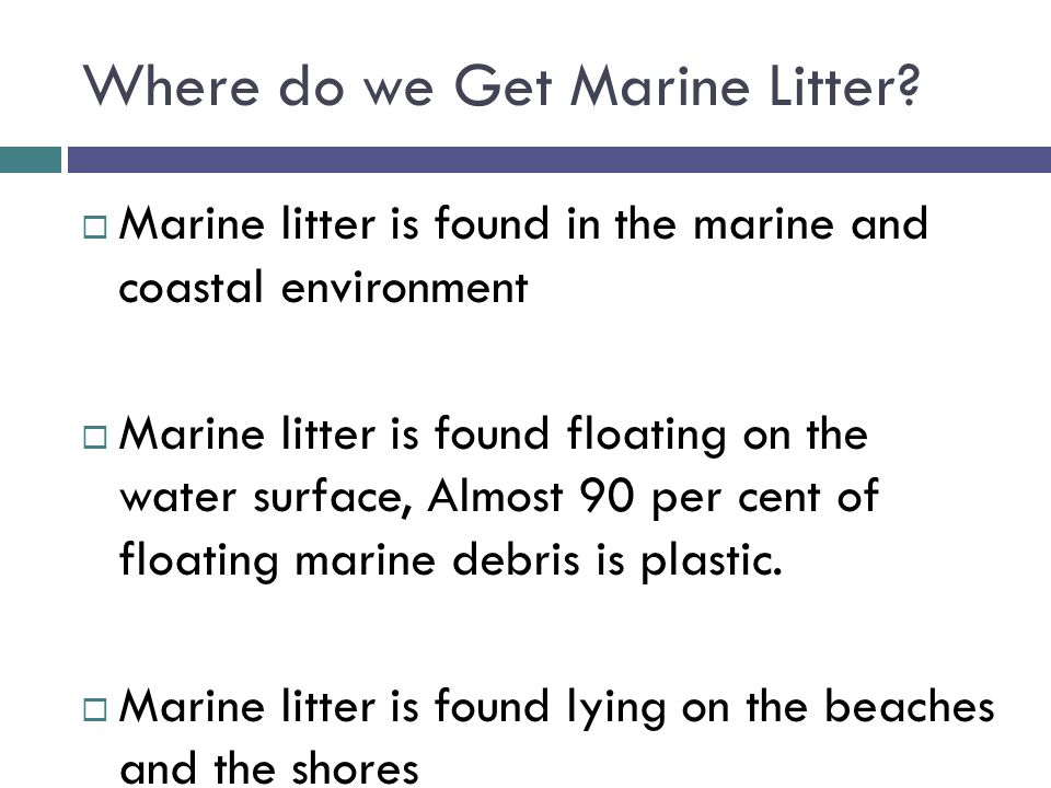 Where do we Get Marine Litter?  Marine litter is found in the marine and coastal environment  Marine litter is found floating on the water surface,