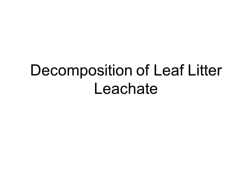 Decomposition of Leaf Litter Leachate