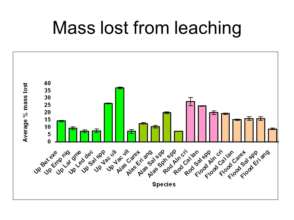 Mass lost from leaching