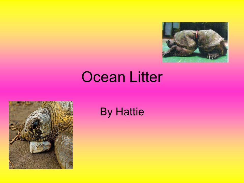 Ocean Litter By Hattie