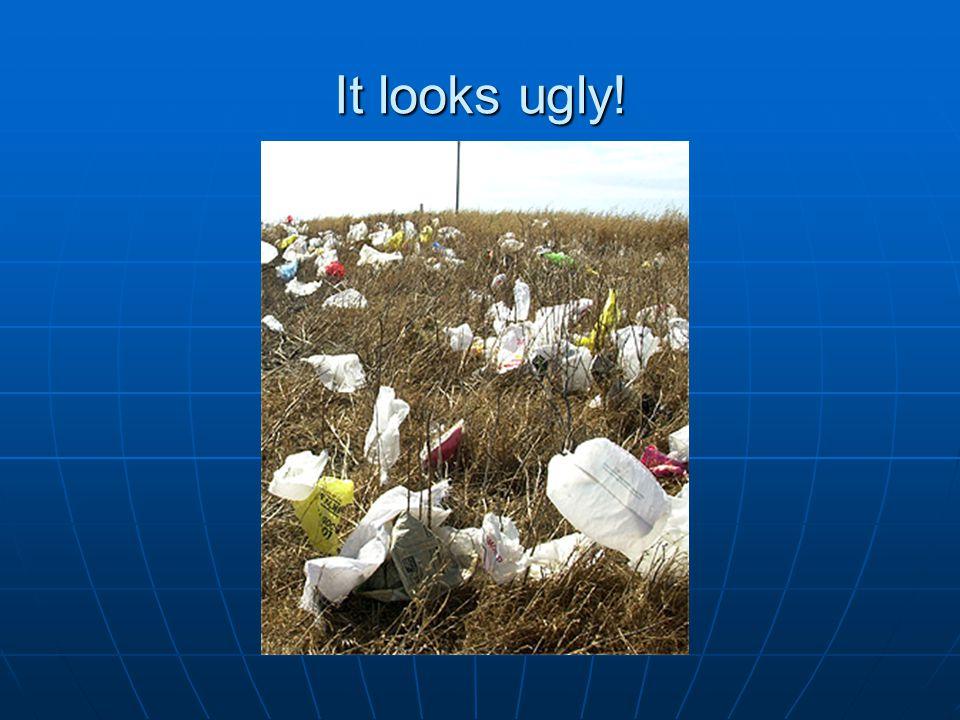 It looks ugly!