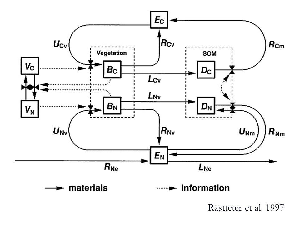 Rastteter et al. 1997