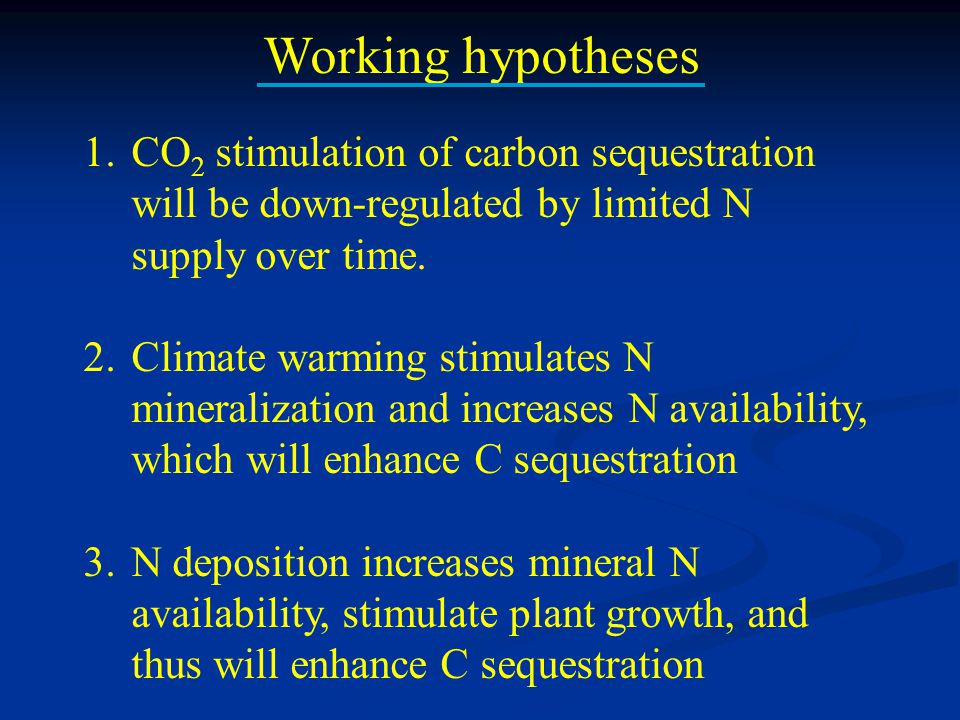 Working hypotheses 1.CO 2 stimulation of carbon sequestration will be down-regulated by limited N supply over time. 2.Climate warming stimulates N min