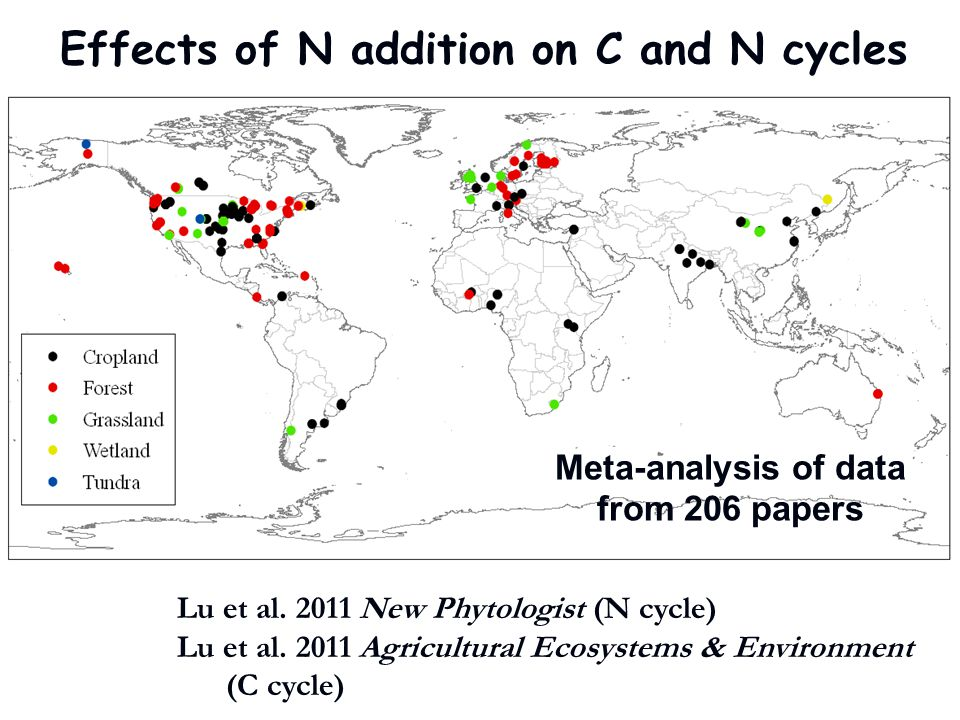 Effects of N addition on C and N cycles Meta-analysis of data from 206 papers Lu et al. 2011 New Phytologist (N cycle) Lu et al. 2011 Agricultural Eco