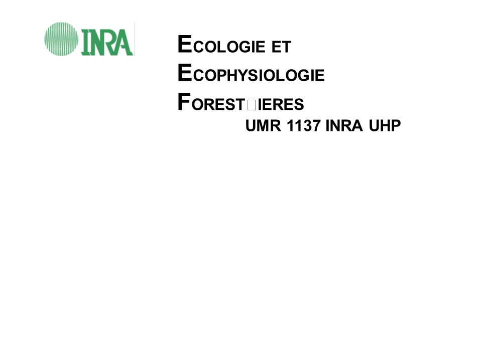 E COLOGIE ET E COPHYSIOLOGIE F ORESTIERES UMR 1137 INRA UHP