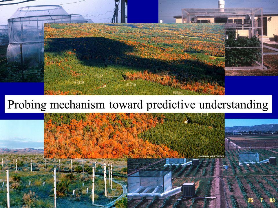 Probing mechanism toward predictive understanding