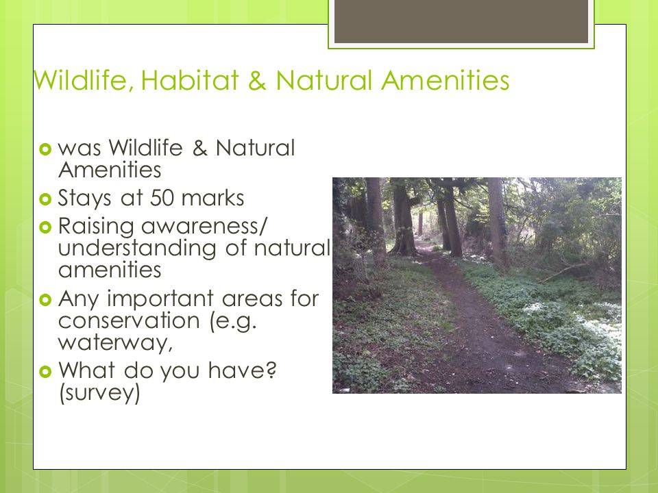 Wildlife, Habitat & Natural Amenities  was Wildlife & Natural Amenities  Stays at 50 marks  Raising awareness/ understanding of natural amenities  Any important areas for conservation (e.g.