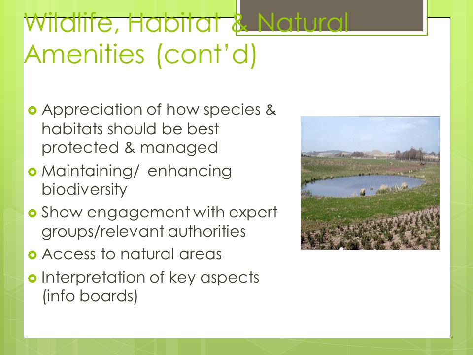 Wildlife, Habitat & Natural Amenities (cont'd)  Appreciation of how species & habitats should be best protected & managed  Maintaining/ enhancing biodiversity  Show engagement with expert groups/relevant authorities  Access to natural areas  Interpretation of key aspects (info boards)