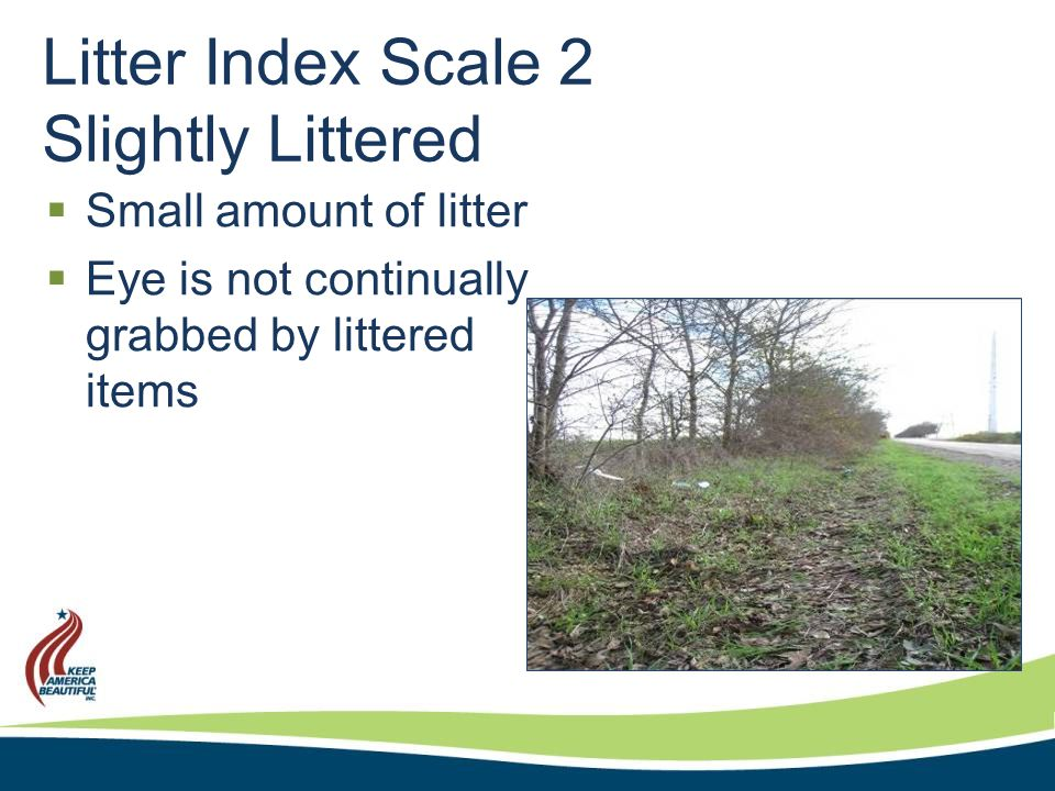 Litter Index Scale 3 Littered  Visible litter catches your eye frequently  Organized effort for removal  Considerable effort to clean