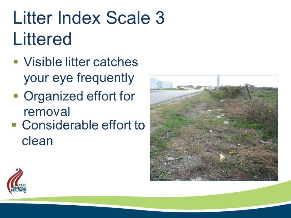 Litter Index Scale 4 Extremely Littered  Equipment may be required for removal  Strong impression of a lack of concern about litter  Continuous amount of litter  Litter first thing noticed  Might include an illegal dump