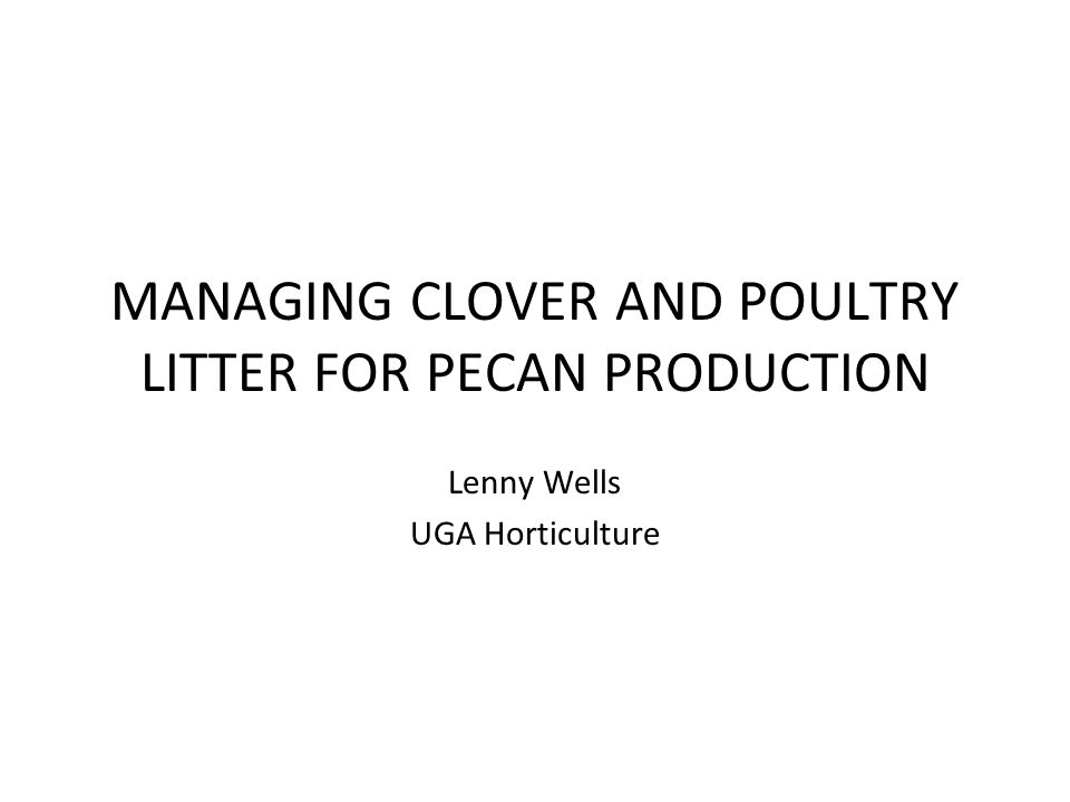 Conclusions A single application of 1 ton poultry litter/acre appears to provide adequate N for pecans Clover alone may provide enough N for pecans in the second year after establishment Clover can remove significant P, K, and Zn from orchard soils Clover can bring otherwise unavailable P into the feeder root zone Microbial activity in pecan orchard soil is higher where clover is grown or litter is applied than where ammonium nitrate is used No Salmonella spp.