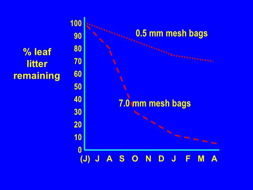 (J) J A S O N D J F M A 100 90 80 70 60 50 40 30 20 10 0 % leaf litter remaining 0.5 mm mesh bags 7.0 mm mesh bags