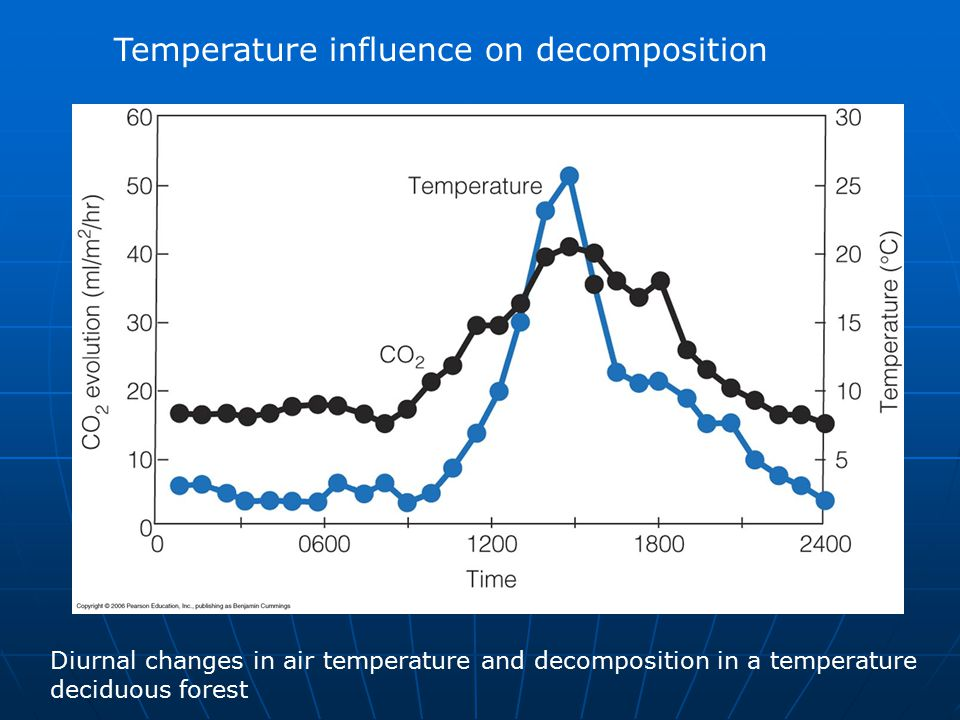 Temperature influence on decomposition Diurnal changes in air temperature and decomposition in a temperature deciduous forest