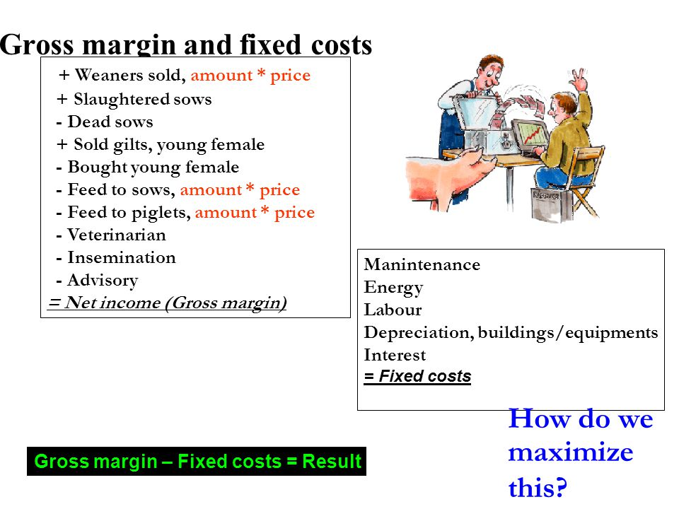 Gross margin and fixed costs + Weaners sold, amount * price + Slaughtered sows - Dead sows + Sold gilts, young female - Bought young female - Feed to sows, amount * price - Feed to piglets, amount * price - Veterinarian - Insemination - Advisory = Net income (Gross margin) Manintenance Energy Labour Depreciation, buildings/equipments Interest = Fixed costs Gross margin – Fixed costs = Result How do we maximize this