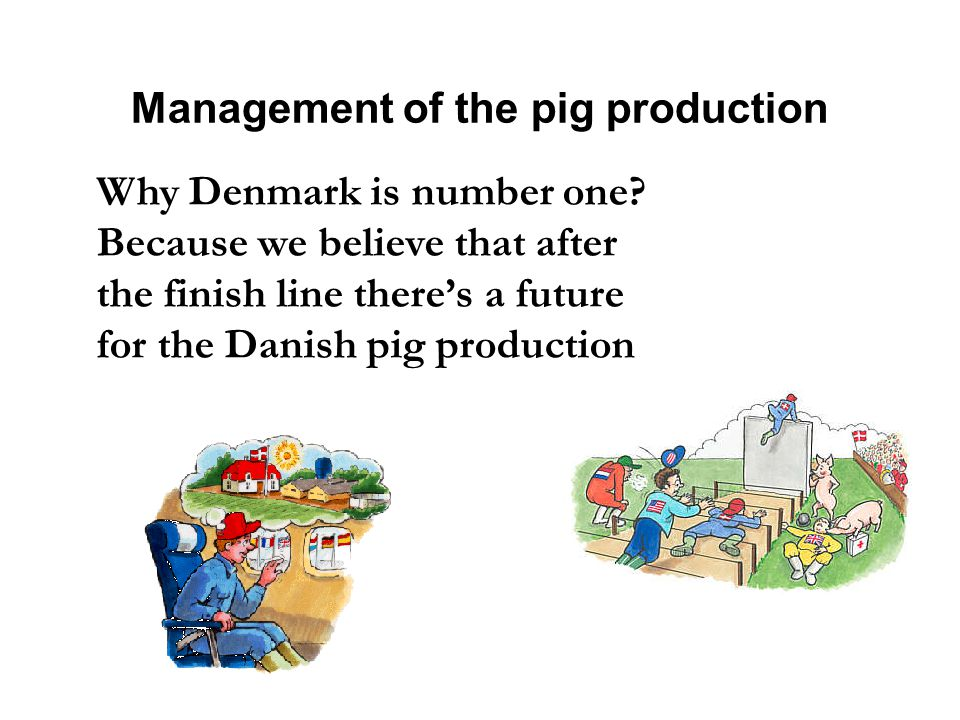 Management of the pig production Why Denmark is number one.
