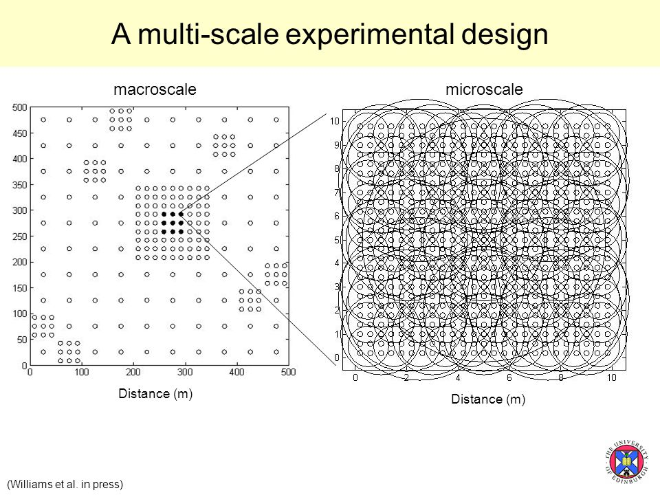 Distance (m) (Williams et al. in press) macroscalemicroscale A multi-scale experimental design