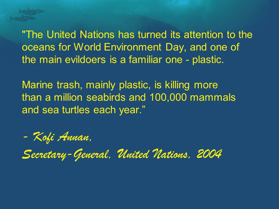 The United Nations has turned its attention to the oceans for World Environment Day, and one of the main evildoers is a familiar one - plastic.