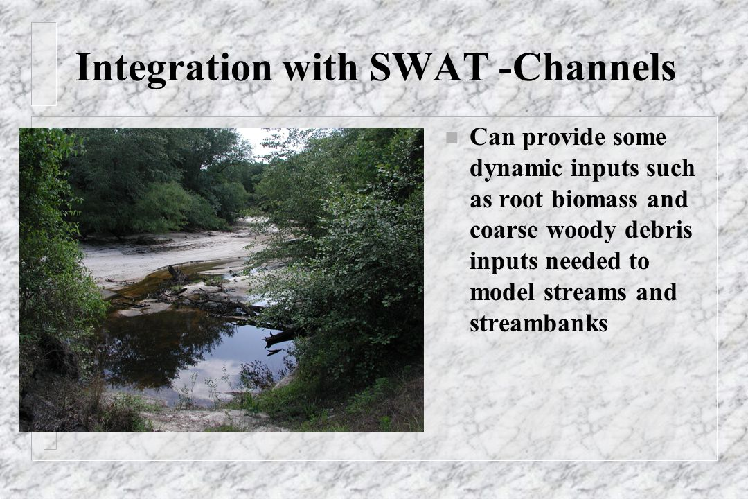 Integration with SWAT -Channels n Can provide some dynamic inputs such as root biomass and coarse woody debris inputs needed to model streams and streambanks
