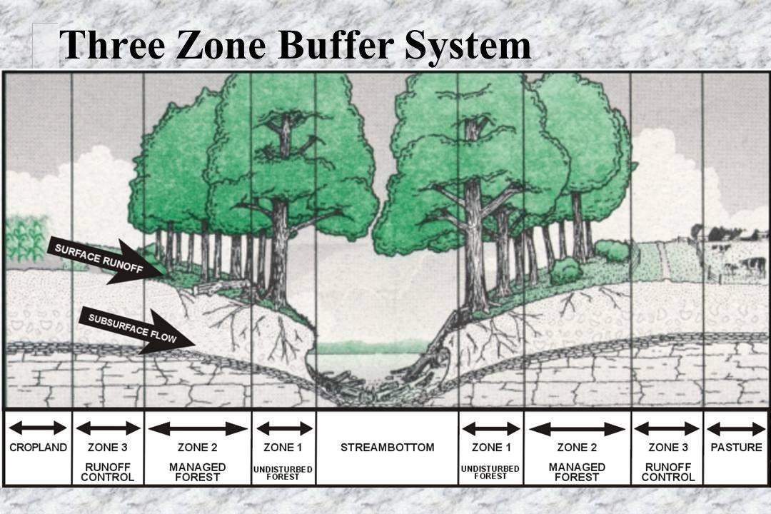 Three Zone Buffer System