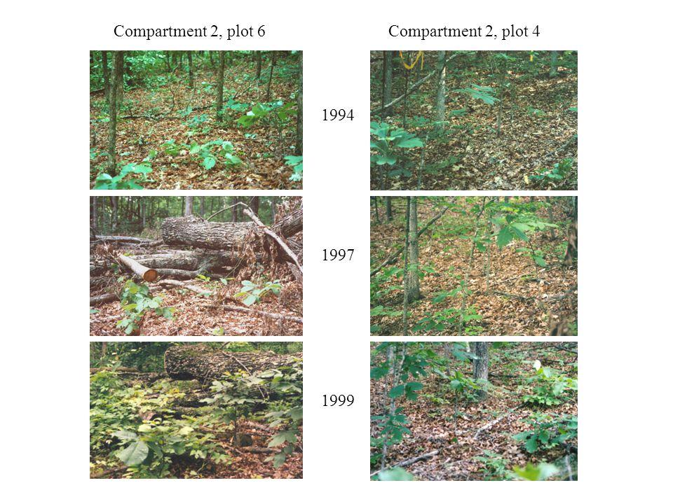 Compartment 2, plot 6Compartment 2, plot 4 1994 1997 1999