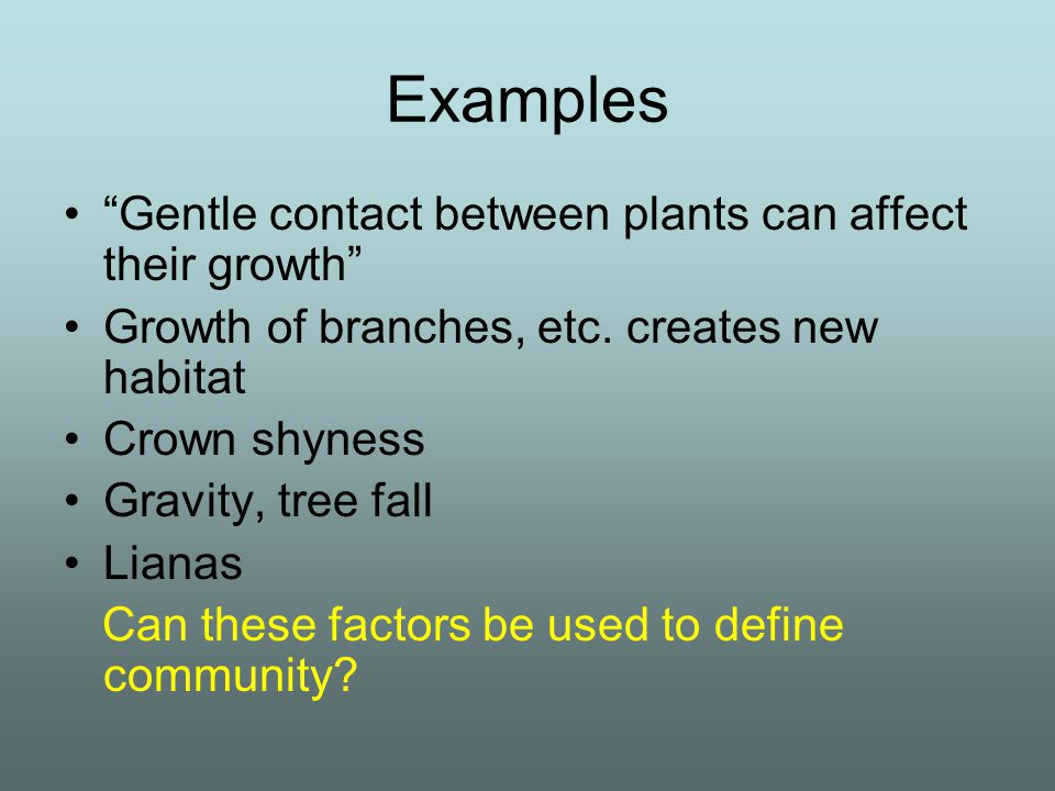 """Examples """"Gentle contact between plants can affect their growth"""" Growth of branches, etc. creates new habitat Crown shyness Gravity, tree fall Lianas"""