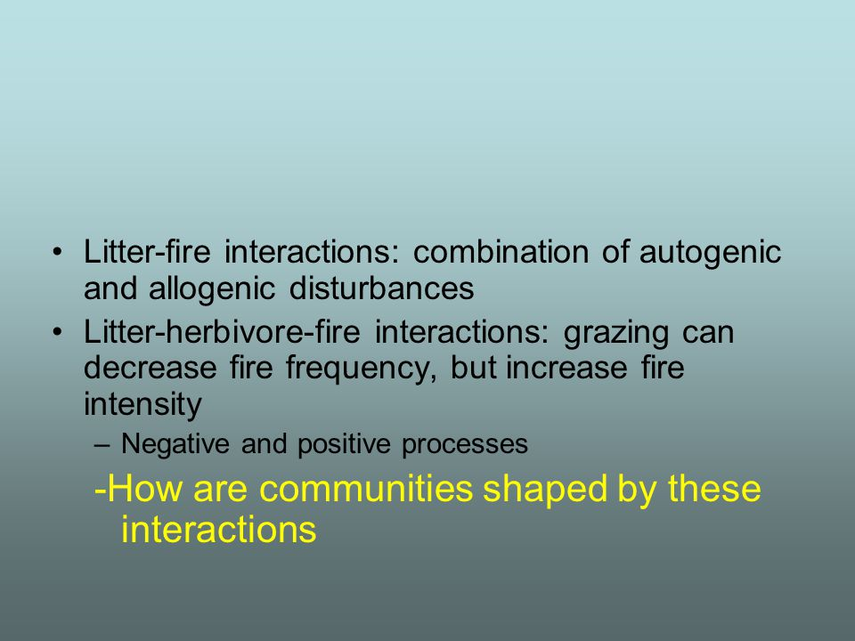 Litter-fire interactions: combination of autogenic and allogenic disturbances Litter-herbivore-fire interactions: grazing can decrease fire frequency,