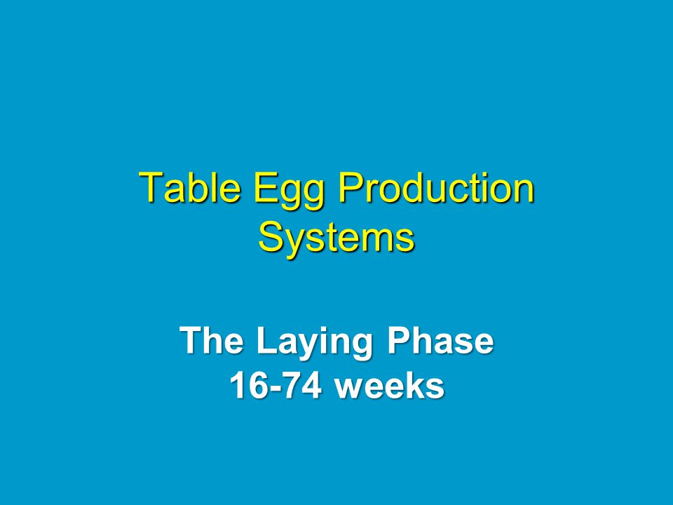 Table Egg Production Systems The Laying Phase 16-74 weeks