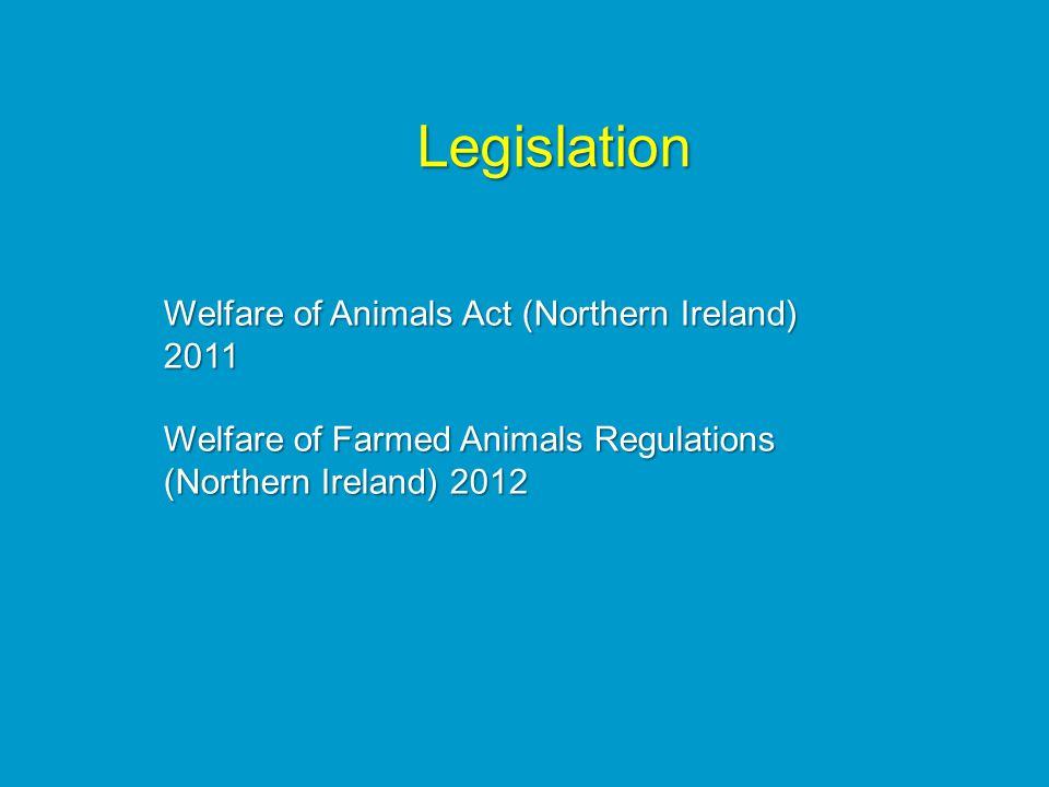 Welfare of Animals Act (Northern Ireland) 2011 Welfare of Farmed Animals Regulations (Northern Ireland) 2012 Legislation