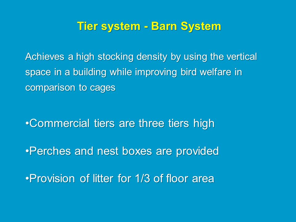 Tier system - Barn System Achieves a high stocking density by using the vertical space in a building while improving bird welfare in comparison to cages Commercial tiers are three tiers highCommercial tiers are three tiers high Perches and nest boxes are providedPerches and nest boxes are provided Provision of litter for 1/3 of floor areaProvision of litter for 1/3 of floor area