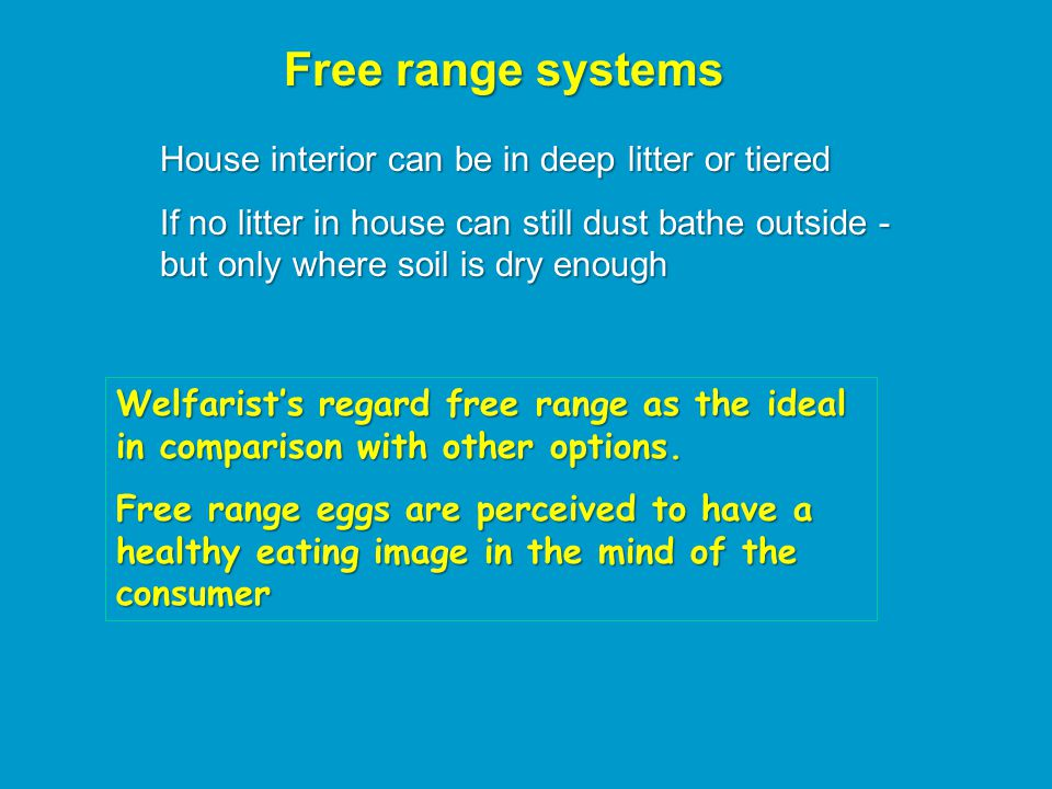 Free range systems House interior can be in deep litter or tiered If no litter in house can still dust bathe outside - but only where soil is dry enough Welfarist's regard free range as the ideal in comparison with other options.