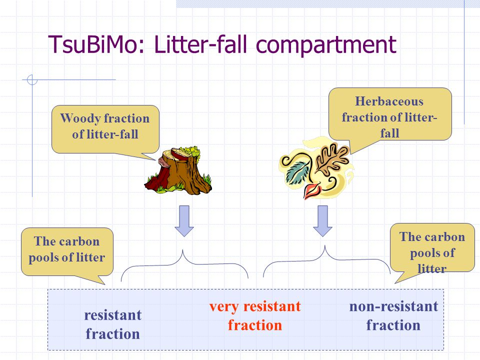 TsuBiMo: Litter-fall compartment very resistant fraction non-resistant fraction resistant fraction Herbaceous fraction of litter- fall Woody fraction of litter-fall The carbon pools of litter