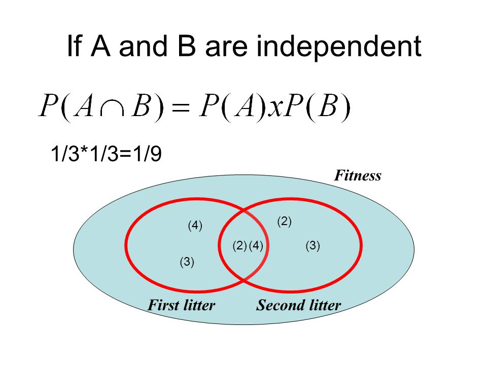 If A and B are independent (2) (3)(4) Fitness (2) (3) (4) First litterSecond litter 1/3*1/3=1/9