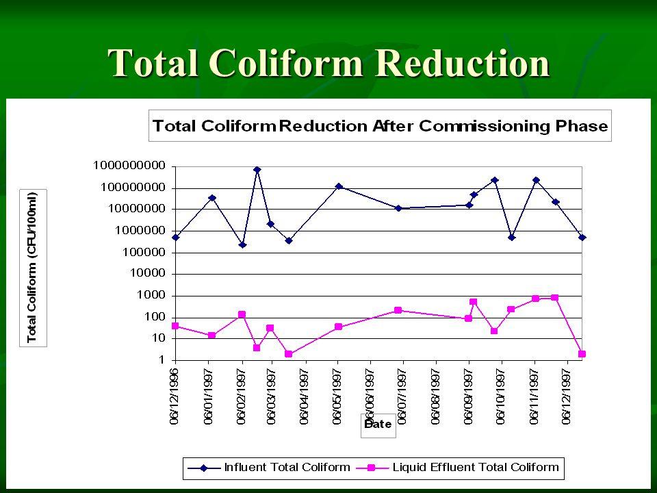 Total Coliform Reduction
