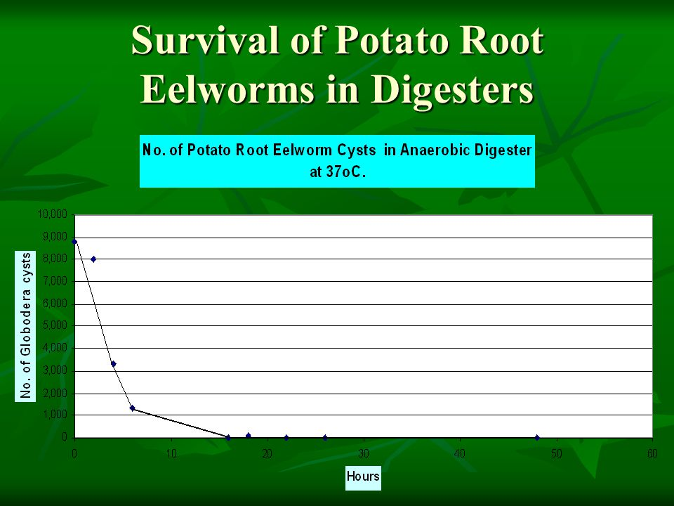 Survival of Potato Root Eelworms in Digesters
