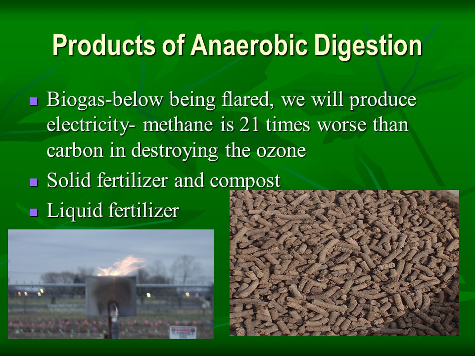 Products of Anaerobic Digestion Biogas-below being flared, we will produce electricity- methane is 21 times worse than carbon in destroying the ozone Biogas-below being flared, we will produce electricity- methane is 21 times worse than carbon in destroying the ozone Solid fertilizer and compost Solid fertilizer and compost Liquid fertilizer Liquid fertilizer