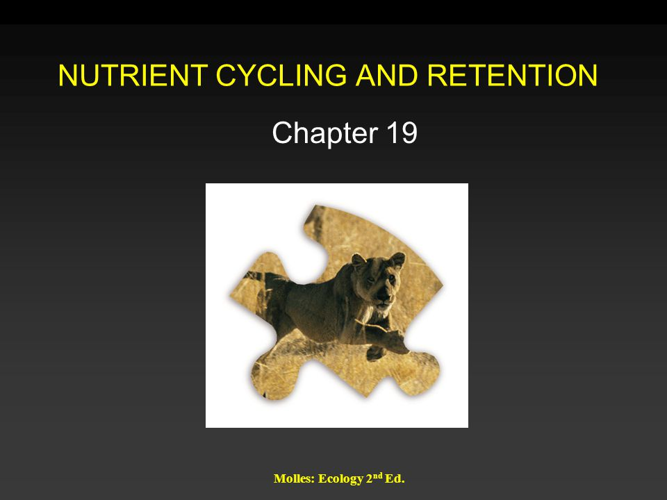 Molles: Ecology 2 nd Ed. NUTRIENT CYCLING AND RETENTION Chapter 19