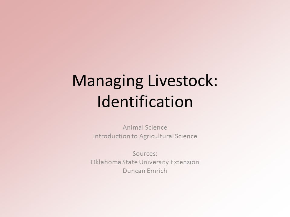 Managing Livestock: Identification Animal Science Introduction to Agricultural Science Sources: Oklahoma State University Extension Duncan Emrich