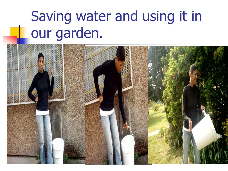 Saving water and using it in our garden.
