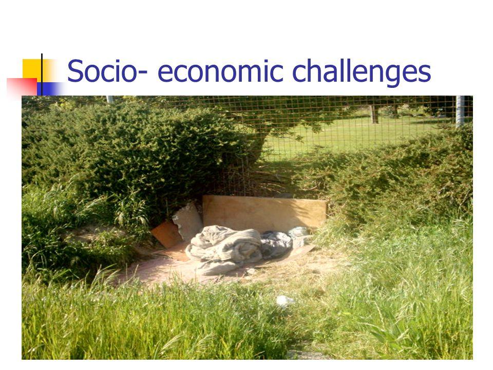 Socio- economic challenges