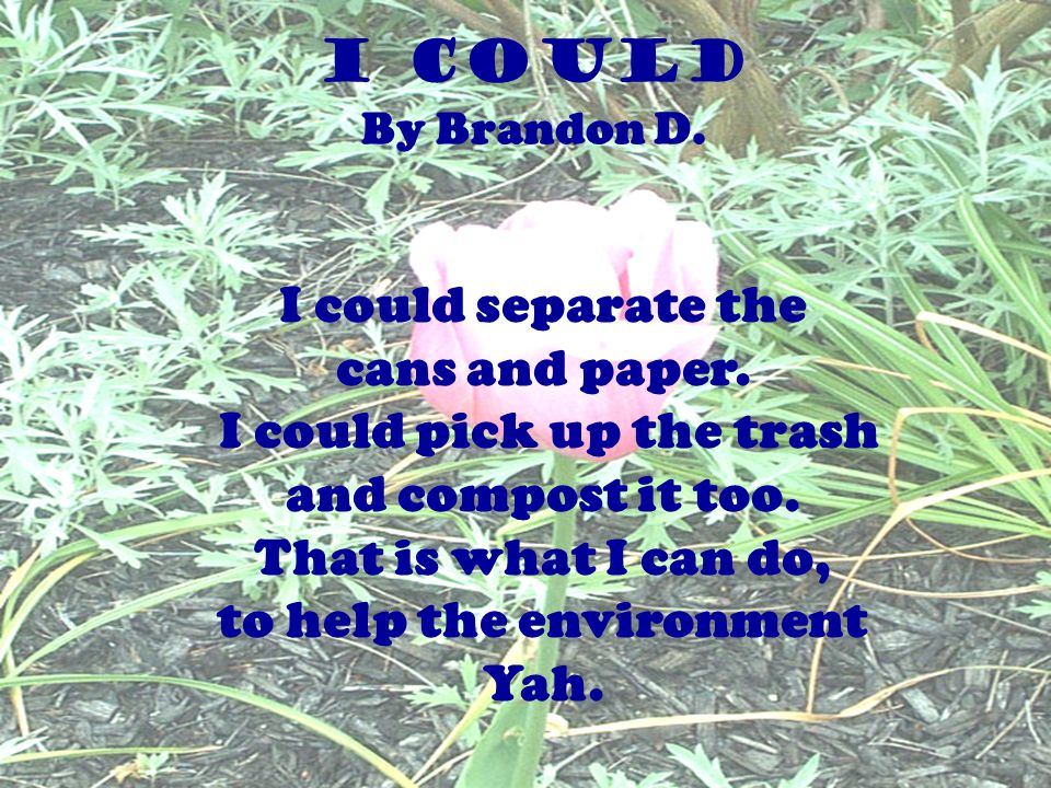 I could separate the cans and paper. I could pick up the trash and compost it too. That is what I can do, to help the environment Yah. I COULD By Bran