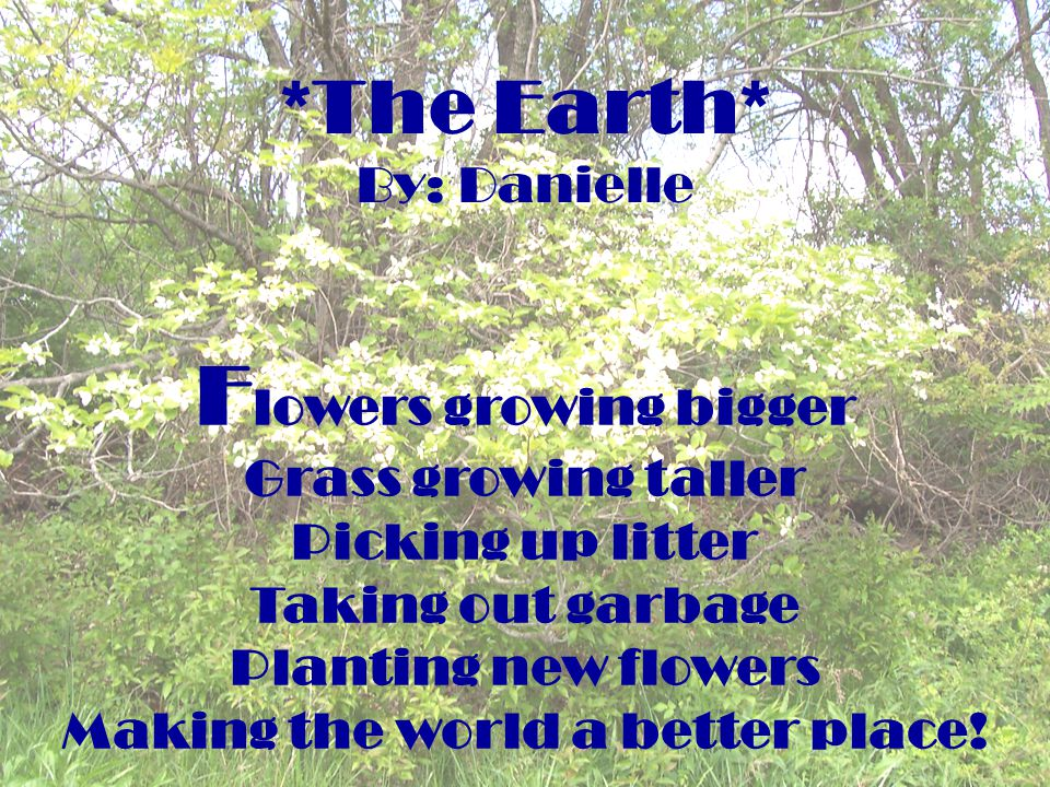 *The Earth* By: Danielle F lowers growing bigger Grass growing taller Picking up litter Taking out garbage Planting new flowers Making the world a bet