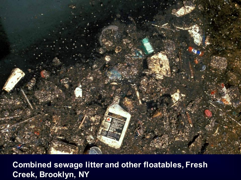 Combined sewage litter and other floatables, Fresh Creek, Brooklyn, NY