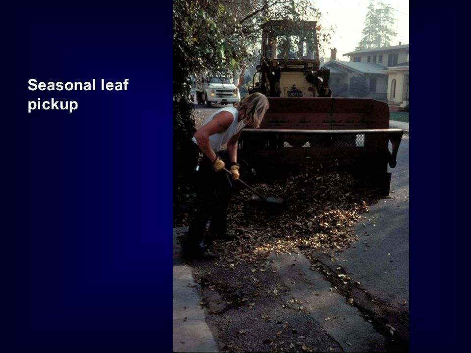 Seasonal leaf pickup