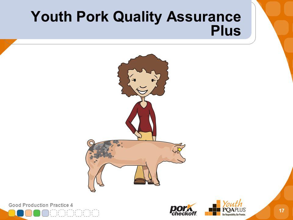 17 Good Production Practice 4 Youth Pork Quality Assurance Plus