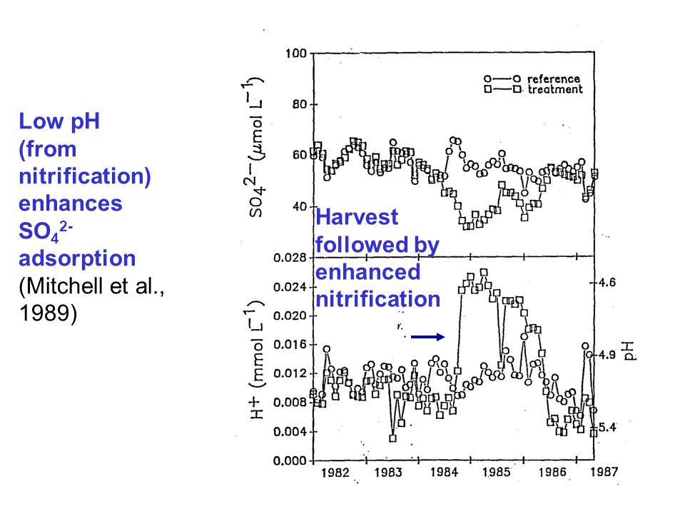 Harvest followed by enhanced nitrification Low pH (from nitrification) enhances SO 4 2- adsorption (Mitchell et al., 1989)