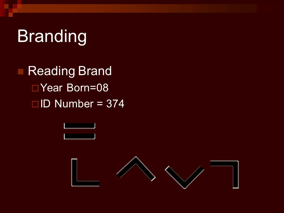Branding Reading Brand  Year Born=08  ID Number = 374