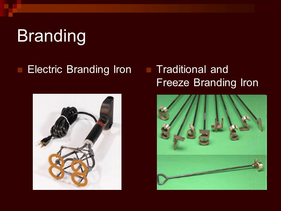 Branding Electric Branding Iron Traditional and Freeze Branding Iron