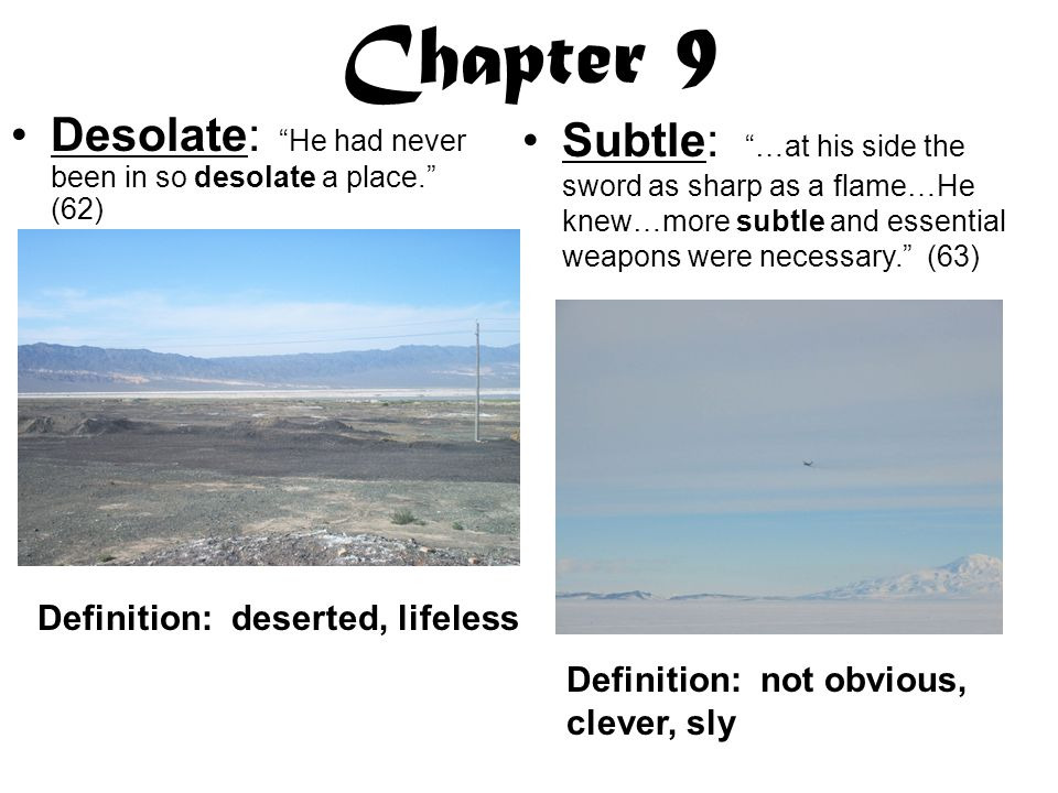 Chapter 9 Subtle: …at his side the sword as sharp as a flame…He knew…more subtle and essential weapons were necessary. (63) Desolate: He had never been in so desolate a place. (62) Definition: deserted, lifeless Definition: not obvious, clever, sly